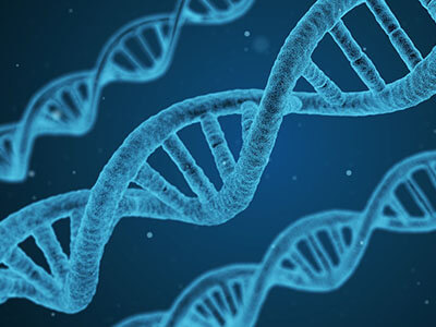 dna molecule biology genetics