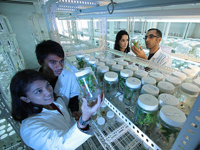 scientists greenhouse