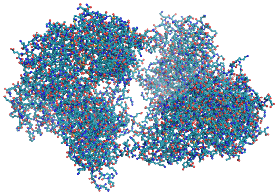 enzyme protein molecule structure